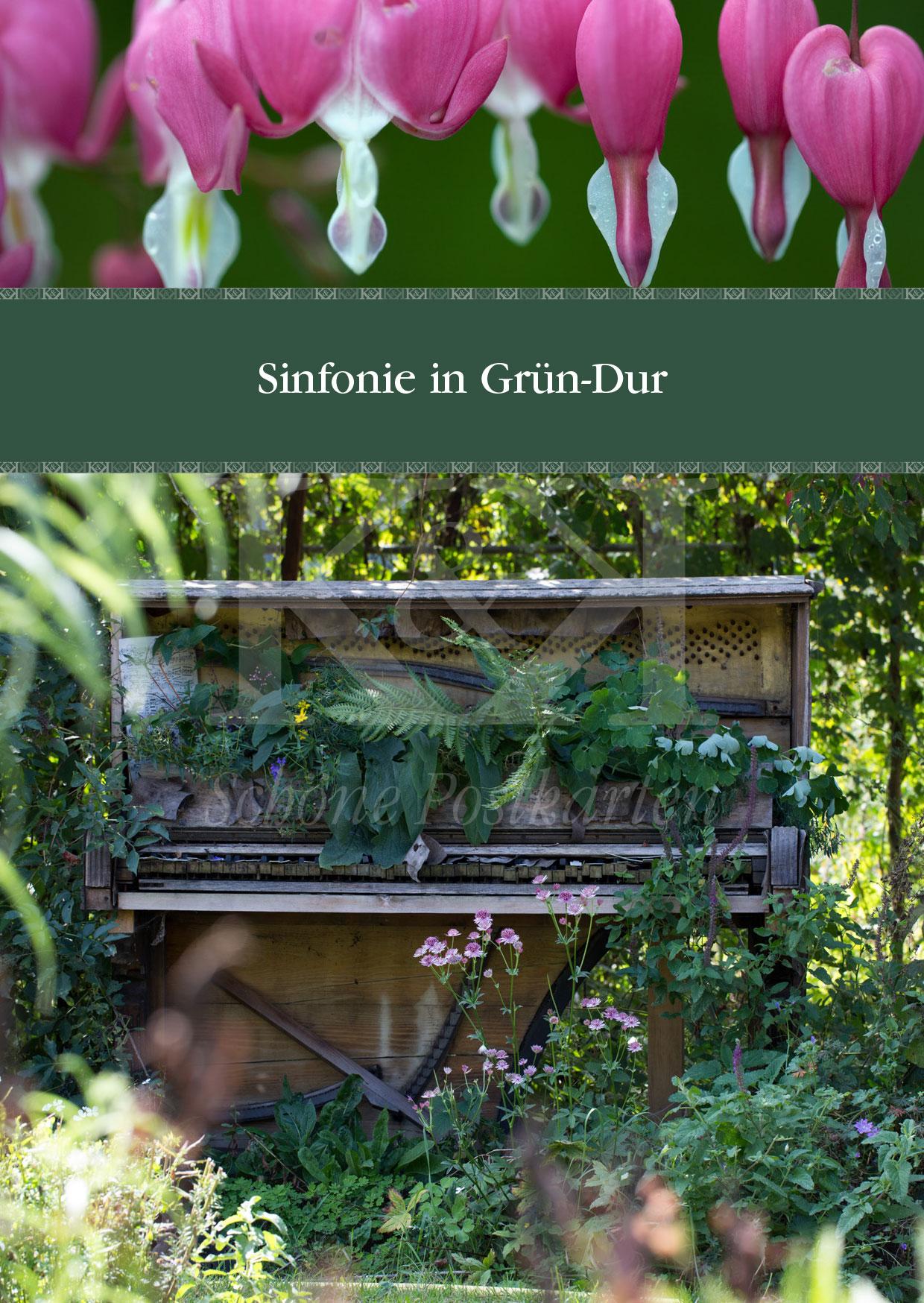 Schöne Postkarte Nr. 12 · Sinfonie in Grün-Dur · © 2017