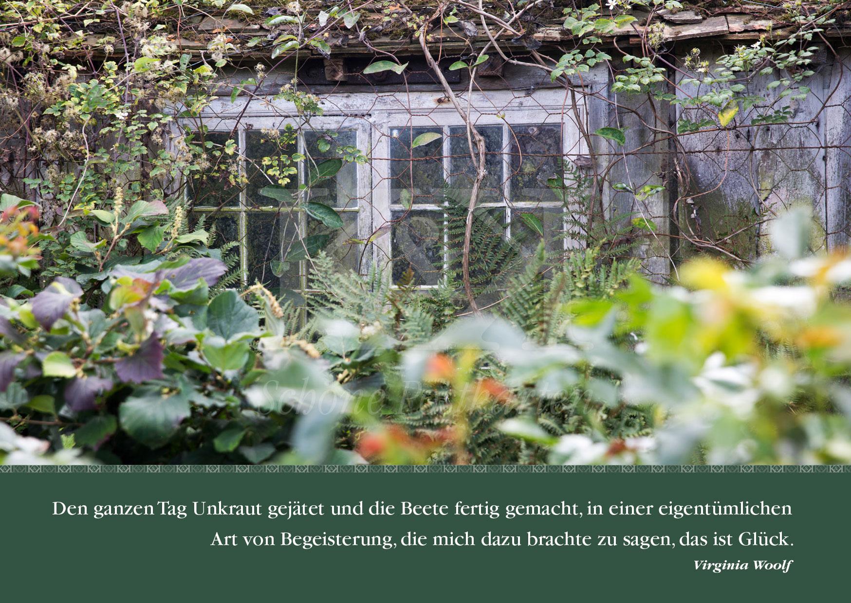 Schöne Postkarte Nr. 2 · Virginia Woolf: Unkraut jäten © 2017
