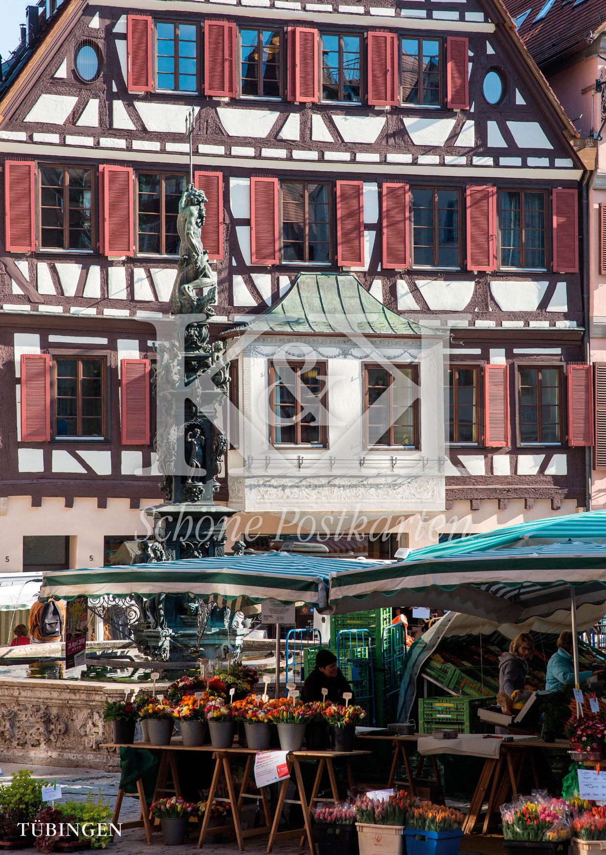 <strong>Schöne Postkarte Nr. 248</strong> · Tübinger Marktplatz mit Neptunbrunnen © 2018