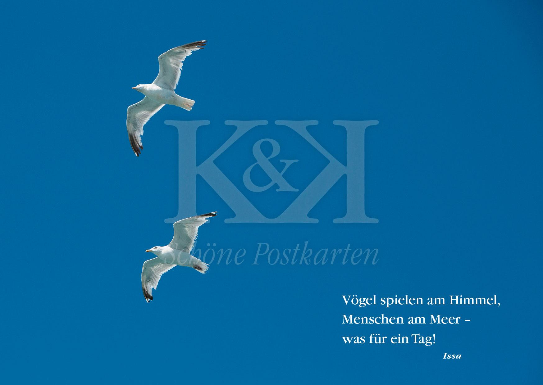 <strong>Schöne Postkarte Nr. 89</strong> · Issa: Vögel spielen am Meer © 2018
