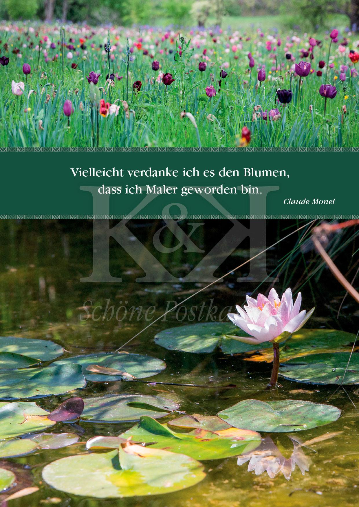 >>> NEU: Schöne Postkarte Nr. 119 · Licht und Farben