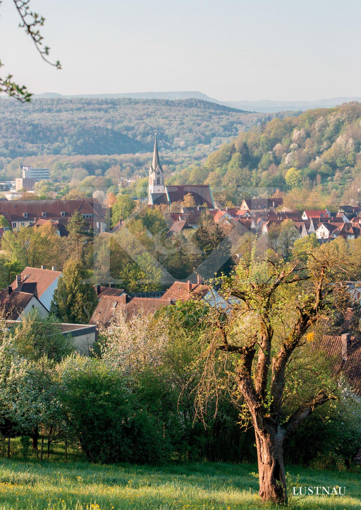 >>> NEU: Schöne Postkarte Nr. 120 · Blick auf Lustnau, Stadtteil von Tübingen